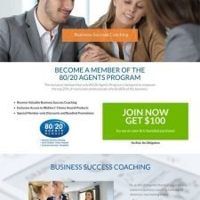 80-20 Agent Website Design