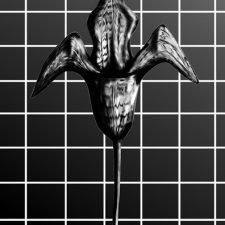 GRIDFLOWER