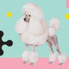 Happy Poodle Day