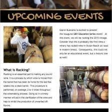 Email Newsletter for BVD Vintners