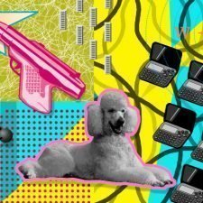 poodle calculate