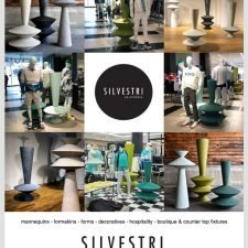 Axis Email Design for Silvestri California